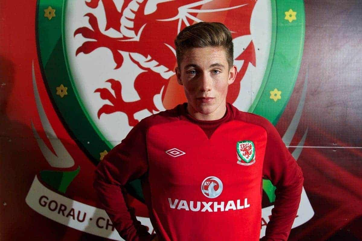 CARDIFF, WALES - Thursday, October 10, 2013: Wales' Harry Wilson poses for a photograph in front of the Wales badge after a training session at the Cardiff City Stadium ahead of the 2014 FIFA World Cup Brazil Qualifying Group A match against Macedonia. (Pic by David Rawcliffe/Propaganda)