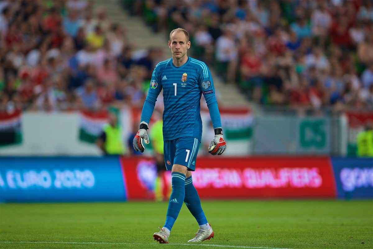 BUDAPEST, HUNGARY - Tuesday, June 11, 2019: Hungary's goalkeeper Péter Gulácsi during the UEFA Euro 2020 Qualifying Group E match between Hungary and Wales at the Ferencváros Stadion. (Pic by David Rawcliffe/Propaganda)