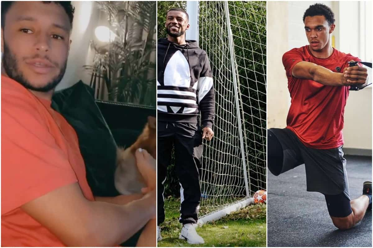 Ox tries out a new job and Gini gets football ban in #QuarantineLife
