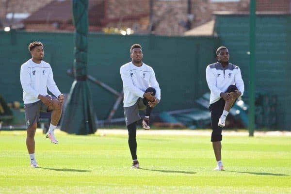 LIVERPOOL, ENGLAND - Wednesday, May 4, 2016: Liverpool's Jordon Ibe, Daniel Sturridge and Sheyi Ojo during a training session at Melwood Training Ground ahead of the UEFA Europa League Semi-Final 2nd Leg match against Villarreal CF. (Pic by David Rawcliffe/Propaganda)