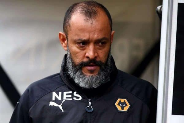 Wolves manager Nuno Espirito Santo (Dave Thompson/PA Wire)
