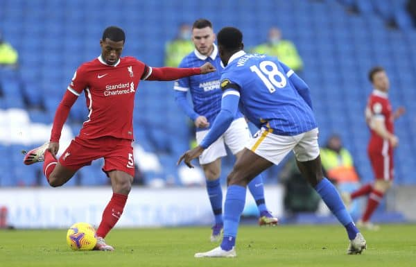 Liverpool's Georginio Wijnaldum (left) and Brighton and Hove Albion's Danny Welbeck battle for the ball (Kirsty Wigglesworth/PA Wire/PA Images)