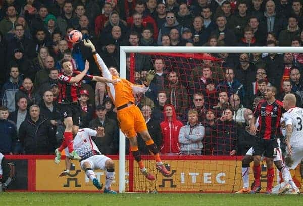 BOURNEMOUTH, ENGLAND - Saturday, January 25, 2014: Liverpool's goalkeeper Brad Jones in action against Bournemouth during the FA Cup 4th Round match at Dean Court. (Pic by David Rawcliffe/Propaganda)